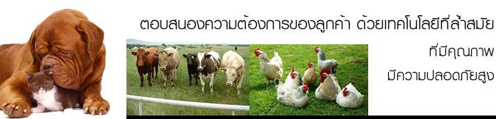 อาหารเสริมสำหรับสัตว์